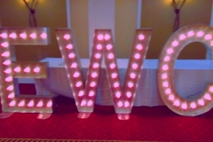 EWC-pink-bulbs - lightbulb sign